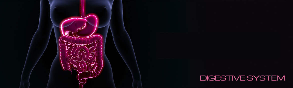 IBS Treatment Chelsea London Colon colonic hydrotherapy